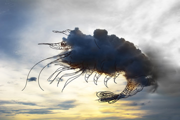 Imagination in the sky.see shrimp