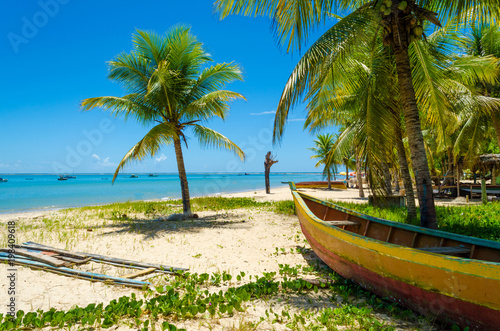 wooden canoe under a coconut tree on the beach green grass around