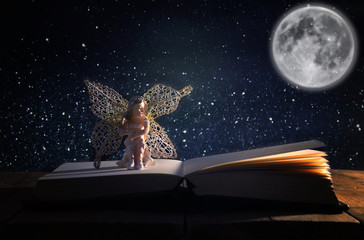 image of magical little fairy sitting on old story book.