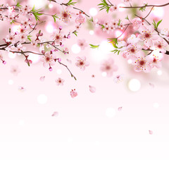 Sweet pink Sakura flowers background, vector illustration