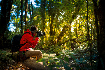 Professional photographer takes photos with camera in the forest