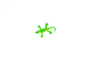 toy green lizard on white background