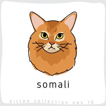 Cat breed collection : Vector Illustration