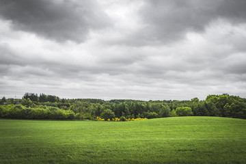 Cloudy weather over a rural green field