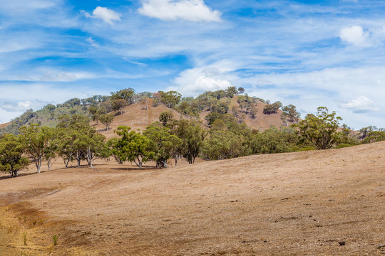 Land affected by drought in the Upper Hunter Valley, NSW, Australia.