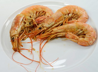 Shrimps served on plate.