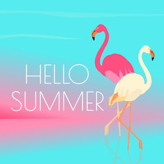 Pink and white flamingos standing in water on one leg. Exotic bird made in flat style. Hello summer vacation concept. Vector illustration.