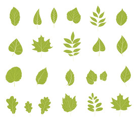 Flat leaves icons.