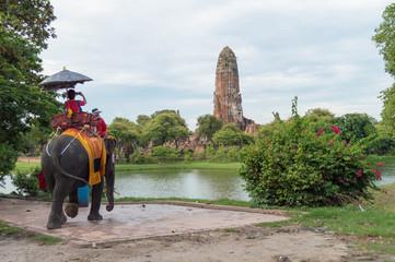 タイ・アユタヤ・遺跡・象・景色