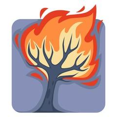 Dangerous wild fire that burns down tall tree