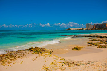 Exotic Paradise. Tropical Resort. Caribbean sea Jetty near Cancun. Mexico beach tropical in Caribbean