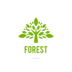 Green Oak Tree Logo.