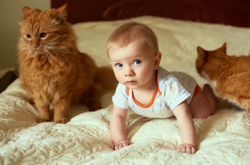 The small child and cat lie on the bed