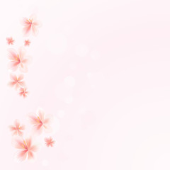 Sakura flowers on Pink bokeh background. Apple-tree flowers. Cherry blossom. Vector