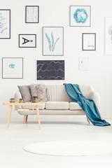 Sofa and blanket