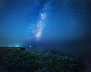 Night photo. The Milky Way and flowers are glowing under the light of the moon on the edge of the sea. Mysterious mysterious photo on the shore of the night sea.