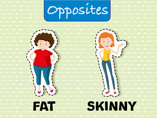 Opposite words for fat and skinny