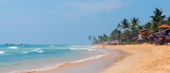Palm trees on the shore of the Indian Ocean on the beach in Hikkaduwa, Sri Lanka.