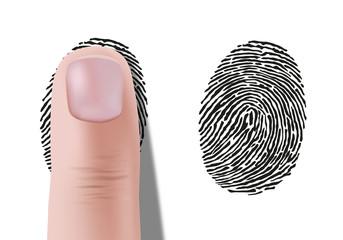 empreinte digitale - Empreinte - identité - empreinte de doigt - crime - identification