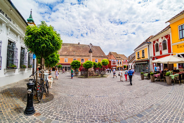 The main square of Szentendre. Wall mural