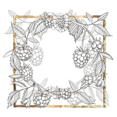 Hand drawn raspberry. Retro sketch style vector illustration. Perfect for invitation, wedding or greeting cards. Gold frame.