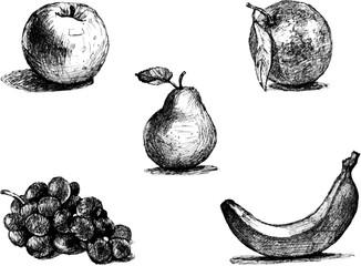 Fruit set. Line drawings