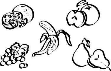 Fruit set. Vector illustrations isolated