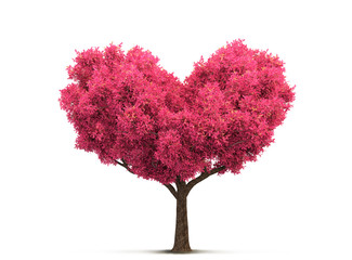 pink tree in heart shape