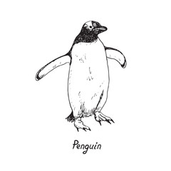 Penguin holding wide wings and walking, hand drawn doodle, sketch in pop art style, vector outline illustration with inscription