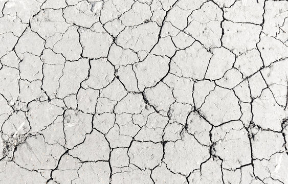 White dried and cracked ground earth background, Close up of dry fissure ground, fracture surface, white cracked texture, for designers