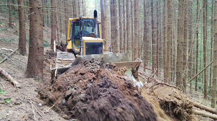 The bulldozer makes way in the forest