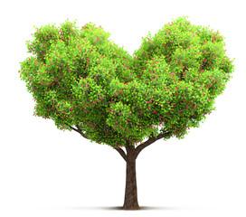 blossom tree in heart shape 3D illustration