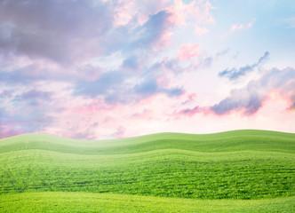 summer green field landscape
