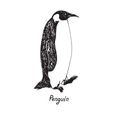 Penguin standing profile hand drawn doodle, sketch in pop art style, vector outline illustration with inscription