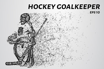 Hockey from the particles. The goalkeeper consists of circles and points. Vector illustration.