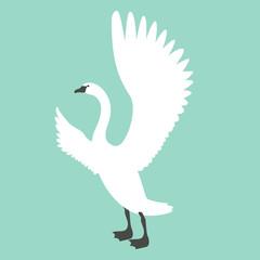 swan  bird  vector illustration flat style profile