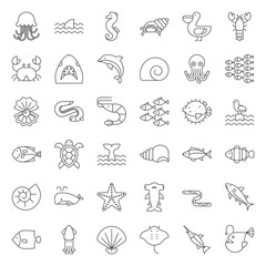 Aquatic Ocean life such as octopus, shell, pelican,herd of fish, outline icon set