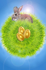 easter, rabbit, eggs