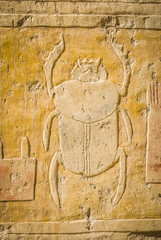 Scarab in the Ancient Egyptian hieroglyphs