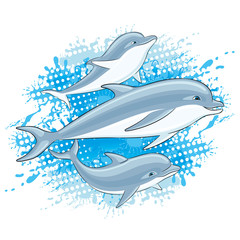 Dolphins and water splash on a white background.