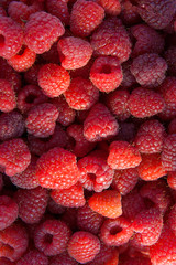 Close up of the ripe raspberry as background.