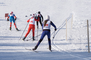 Three skiers in bright clothes run on a long road .