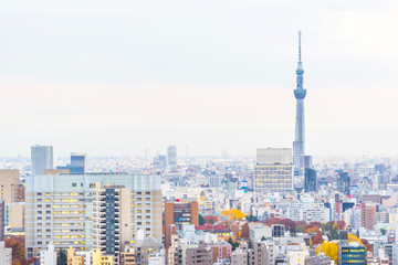 Asia business concept for real estate and corporate construction - panoramic modern city skyline aerial sunset view of bunkyo under fantasy pink sky and cloud, tokyo, Japan