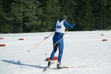 Group of nordic skier in professional race .