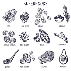 Set of hand drawn superfoods.