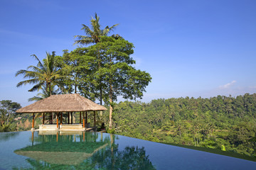 Infinity pool in the jungle of Ubud in Bali, Indonesia