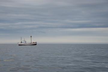 Whalewatching in der Skjálfandibucht bei Húsavík / Nord-Island