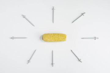 GMO Corn, concept