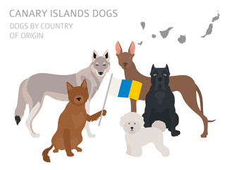 Dogs by country of origin. Spain. Canary islands dog breeds. Infographic template