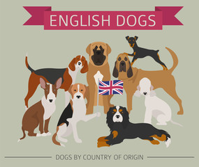 Dogs by country of origin. English dog breeds. Infographic template
